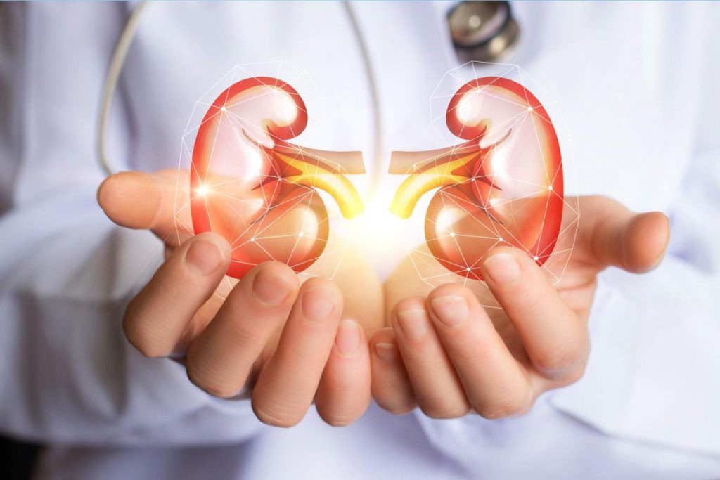 Palestra Terapia Substitutiva Renal